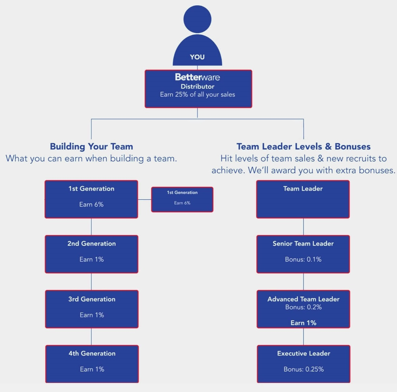 Commission Structure for Team Leaders